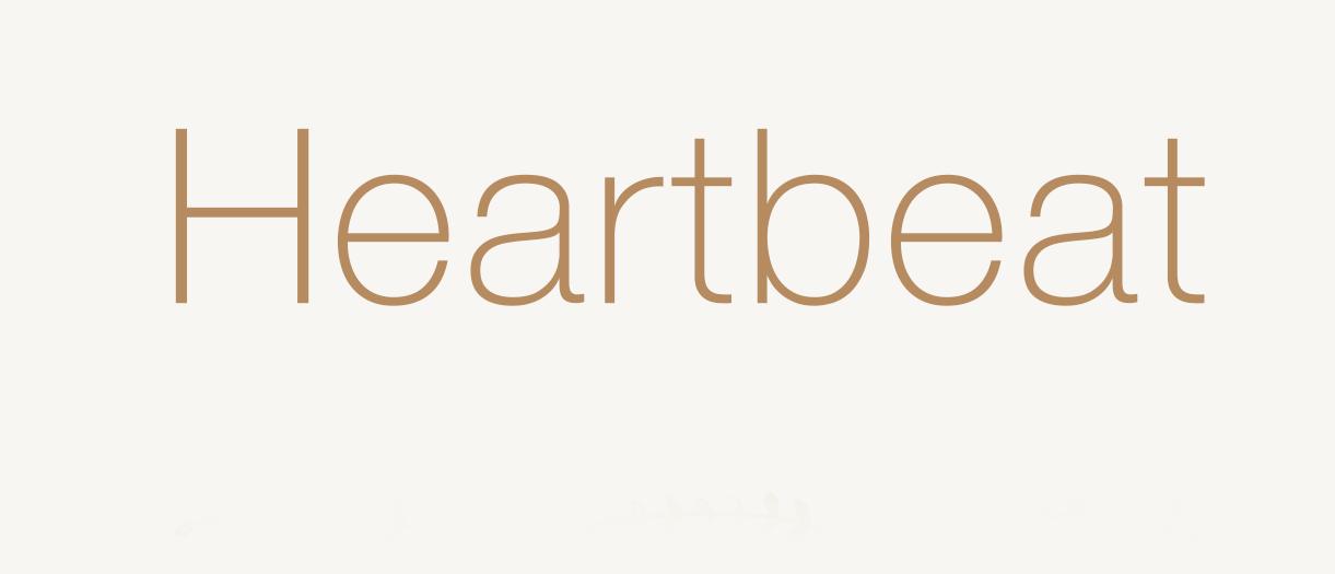 HEARTBEAT 520,-